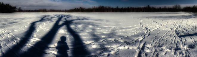 39/365 - Tracks & Shadows