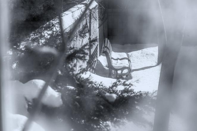 88/365 - A quiet place