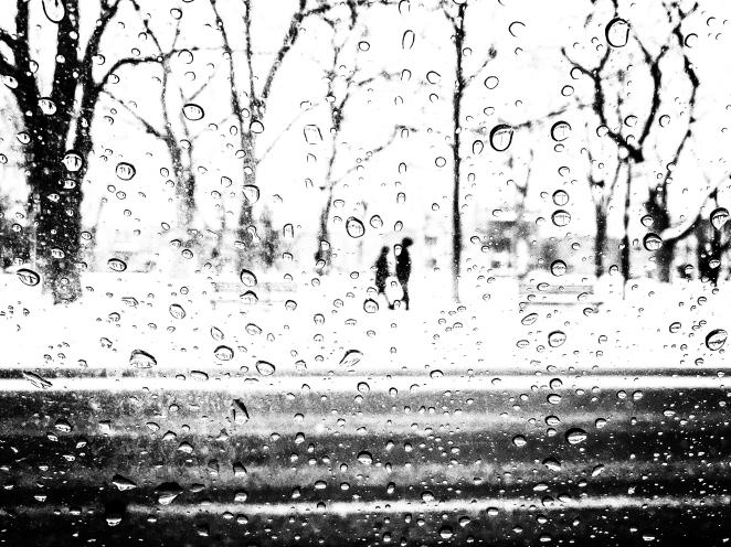 91/365 - Tiny Silhouettes