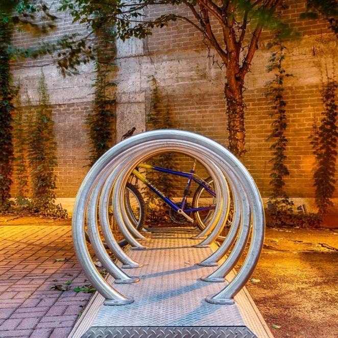 250/365 - Circling Cycle