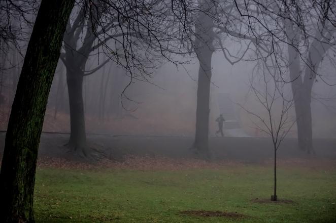 Flight and Fog
